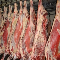 Export as an instrument to overcome meat's industry stagnation