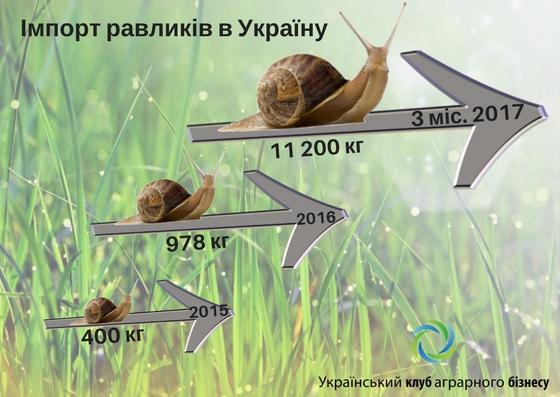 Український імпорт равликів